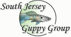 www.south-jersey-guppy-group.com