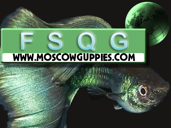 moscow-guppies-logo