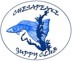 www.chesapeakeguppyclub2004.wordpress.com