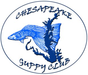 Chesapeake Guppy Club