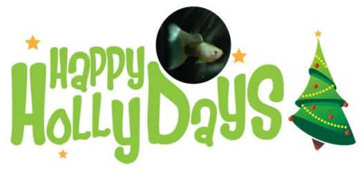 Happy Guppy HollyDays