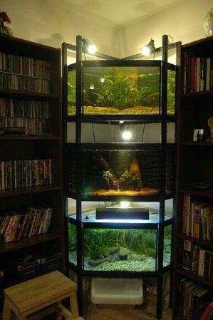 Stalaza za akvarijume