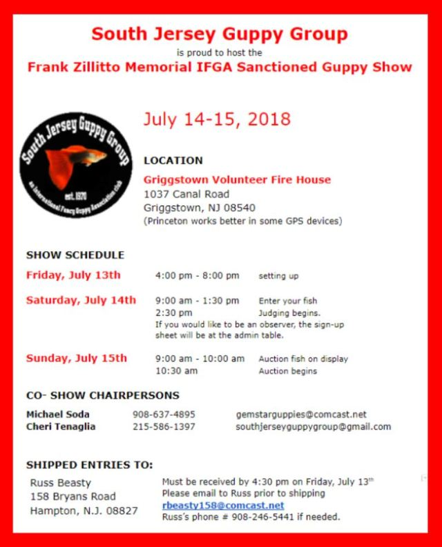 South Jersey IFGA guppy show July 14th and 15th