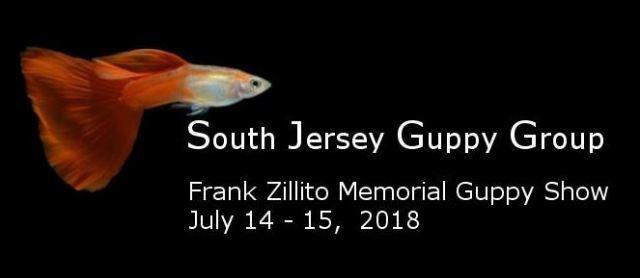 Frank Zillito Memorial Guppy Show
