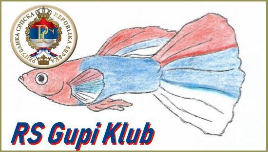 RS Gupi Klub logo 3