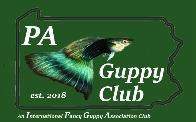 PA Guppy Club Logo w state outliner
