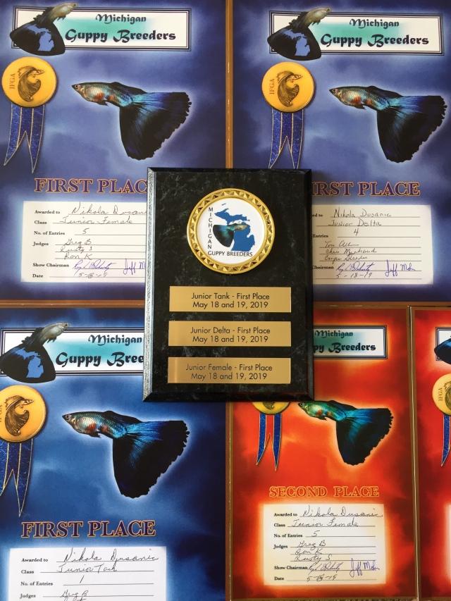 IFGA Guppy Awards Junior Class Nikola Dusanic