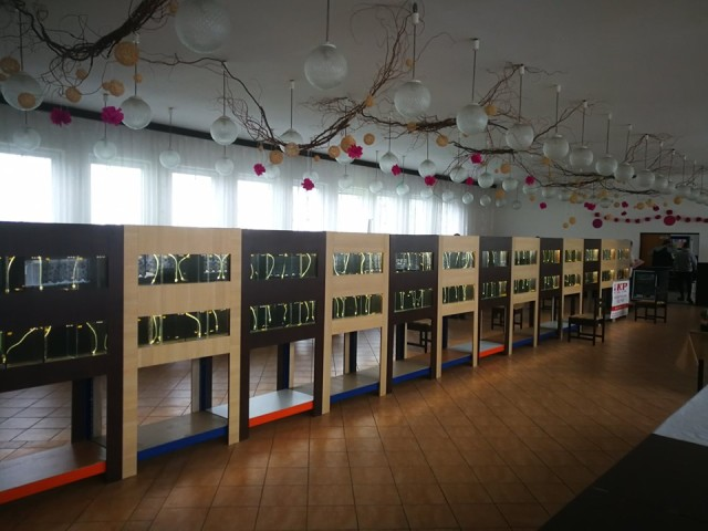 Fish tank shelf - shelves