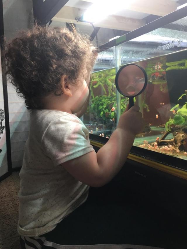 Jordan Dusanic youngest guppy researcher